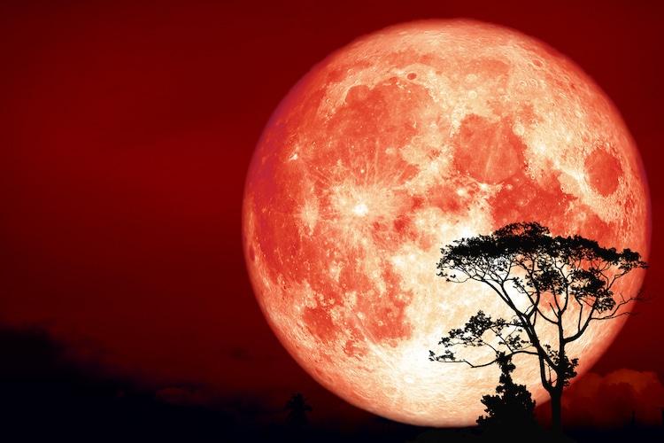 https://www.tvojastrolog.com/wp-content/uploads/2020/03/moon.jpg
